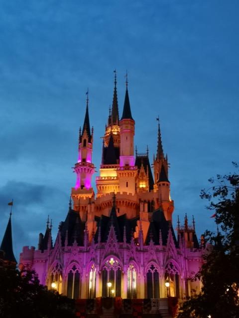 ディズニーランド4歳子供と行く夜のライトアップされたシンデレラ城の画像