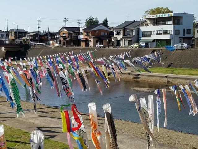 新潟県加茂市加茂山公園こいのぼり画像